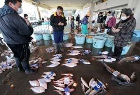 Estricto control de productos de alimentación en Japón