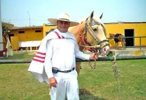 Show de Caballos Peruanos de Paso