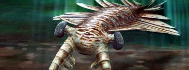 Recreación de un 'Anomalocaris', un depredador marino de hace unos 515 millones de años, realizada por Katrina Kenny, de la Universidad de Adelaida
