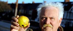 Una de las manzanas caídas del cielo Foto: Daily Telegraph