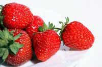 El consumo de frutos rojos previene la aparici�n de enfermedades cardiovasculares