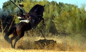 Castilla La Mancha legaliza la caza con lanzas