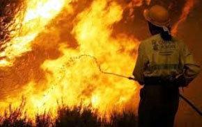 1.000 millones de pérdidas en los incendios forestales de Valencia