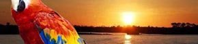 Iquitos de Perú: la Amazonía en toda su belleza