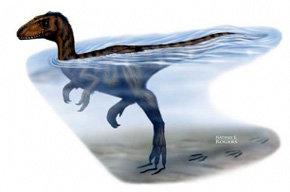 Rastros en un lecho de río en China, los dinosaurios eran poderosos nadadores