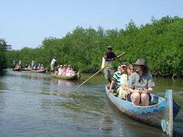 EcoTurismo en los manglares colombianos