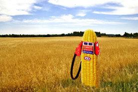 Los biocarburantes no terminan de arrancar