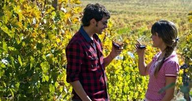 73 viñas chilenas desarrollan el turismo en sus instalaciones