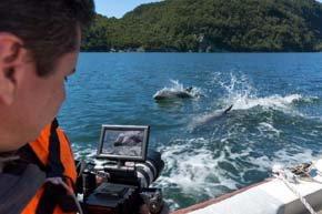 Chile lanza video promocional de atractivos de Aysén