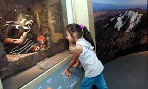 Niño del cerro El Plomo volverá a exhibirse a 60 años de su descubrimiento