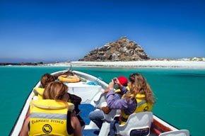 Paseos náuticos de Punta de Choros, Chile