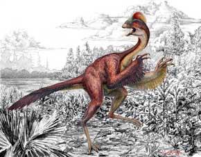Descubren restos de dinosaurio parecido a un pollo de hace 66 millones de años