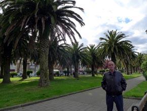 El mejor palmeral del norte de España está en San Vicente de la Barquera.