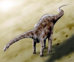 Descubren el primer saurópodo diplodócido de América del Sur
