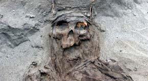 Restos de momias | Foto: Universidad de Wroclaw