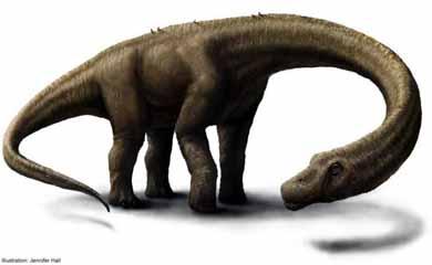 Descubren en la Patagonia al dinosaurio terrestre más grande del mundo