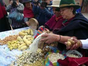 Tungurahua en Ecuador, imagen de unidad en los pueblos para la promoción turística