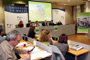 El 6º Congreso de Actividad Físico Deportiva para Mayores instaura los premios Cima-Un estilo de vida