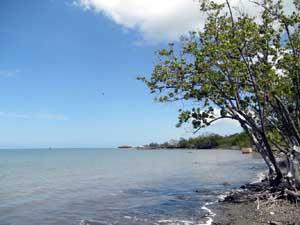 Mayagüez, La Sultana del Caribe