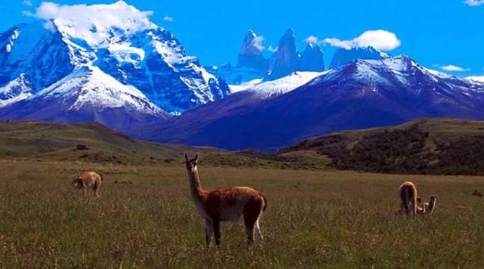 Torres del Paine, (Patagonia chilena)