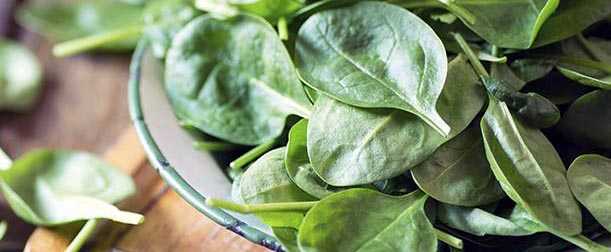 Cinco razones para empezar a comer espinacas todos los días