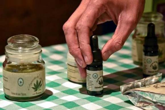 El Parlamento alemán legaliza cannabis para uso terapéutico