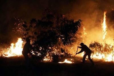 Chile: Combaten 91incendios forestales con casi 24.500 hectáreas quemadas