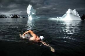 Activista nada entre témpanos de la Antártida para pedir protección oceánica