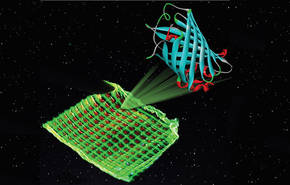 Ilustración de un filtro de color con proteínas luminiscentes verdes y rojas impreso en una microestructura de malla / Katharina Weber
