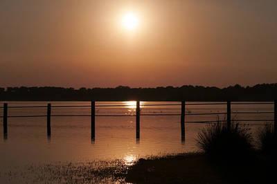 Atardecer en el Parque Nacional y Natural de Doñana