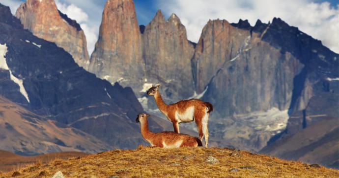 CHILE: Factores claves para la reactivación definitiva del turismo