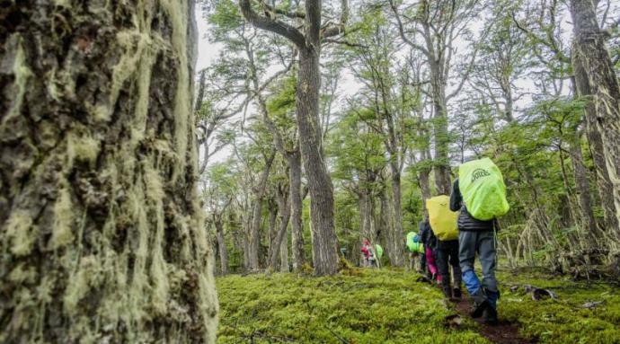 Ruta del Huemul: Más de 80 personas recorrieron la Reserva Tamango y Parque Patagonia