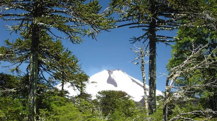 Chile nominado nuevamente como mejor destino turismo aventura de Sudamérica