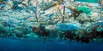 Parche de basura del Pacífico. Dying Regime.
