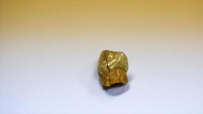 Arqueólogos iraníes han hallado un diente perteneciente a un infante de Neandertal, que data de hace aproximadamente 45 000 años, 28 de octubre de 2018.