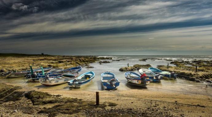 Isla Mocha, Chile: el destino con su mar en llamas que enamora a los turistas