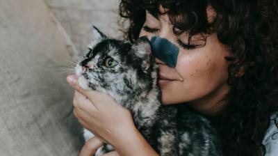 El amor de los gatos- (Sam Lion)