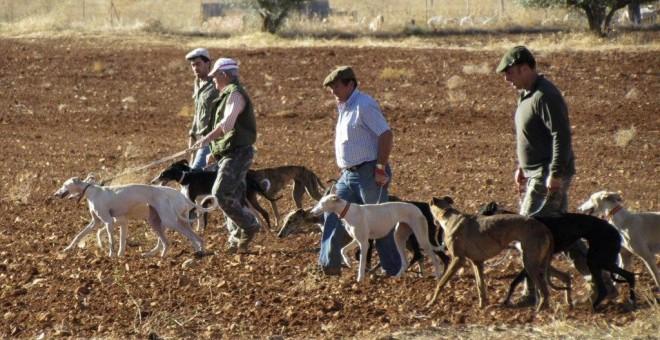 El TSJ se reafirma y paraliza también la Orden de Caza en Castilla y León