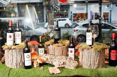 Avenencia, exclusivos vinos de autor a precios asequibles
