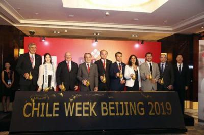 Miel chilena conquistará mercado chino con su pureza y calidad