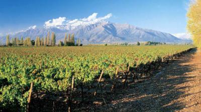Chile busca seducir con experiencias enoturísticas, de nieve y naturaleza al mercado de lujo latinoamericano