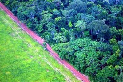 Paisaje cerca de Río Branco, en la Amazonía, donde cerca del 20% del ecosistema ha sido talado o destruido en los últimos 40 años. Cortesía Conservación Internacional