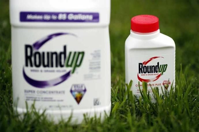 El glifosato se utiliza en Roundup, un herbicida muy extendido, de la multinacional Monsanto.