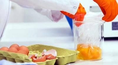 Dinamarca confirma venta de 20 toneladas de huevos infectados con fipronil
