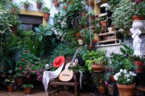 Córdoba celebra la Fiesta de los Patios