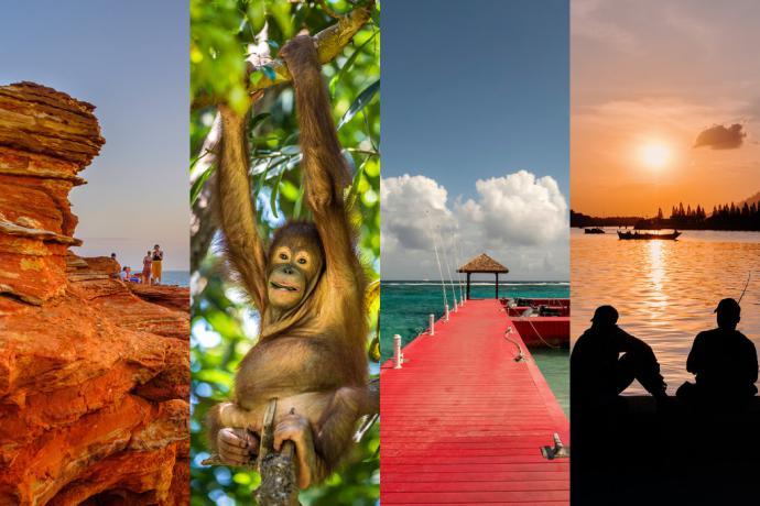 Viajes: La selección del New York Times para 2020