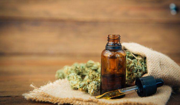 Nace Cannabity Healthcare, la Comunidad global del cannabis terapéutico