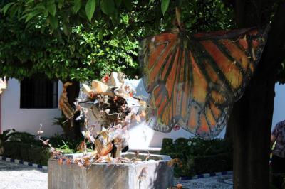 La Naturaleza Cósmica. Santuario de la Mariposa Monarca presente en el Museo Bellas Artes de Córdoba.