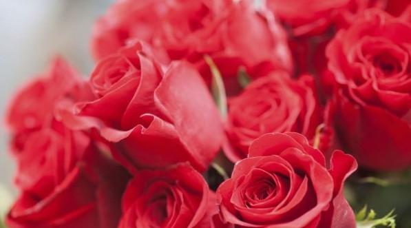 Escoge los mejores diseños florales para celebrar San Valentín