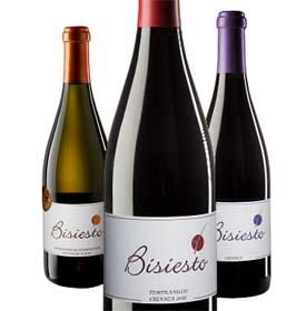 Los vinos conquenses de Bodega Soledad